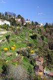 Terraced gardens to San Vigilio, Lombardy, Italy Stock Photography
