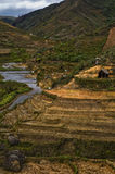 Terraced hills in Madagascar. A countryside scene in Madagascar where small huts dot the terraced hills. This is home to the Zafimaniry people Stock Image