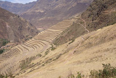 Terraced Inca fields and ruins of village Royalty Free Stock Photo