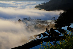 Terraced landscape, Yunnan, China Royalty Free Stock Images