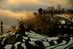 Terraced landscape, Yunnan, China Royalty Free Stock Photos