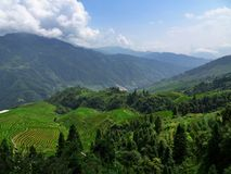 The terraced paddy fields in Guangxi Zhuang Autonomous Region in China. Hidden in the clouds Stock Photos