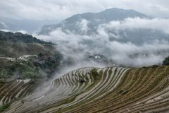 The terraced paddy fields in Guangxi Zhuang Autonomous Region in China. Hidden in the clouds Royalty Free Stock Photography