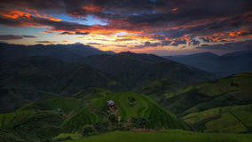 Terraced rice field inside fog and morning ray in Mu Cang Chai, Royalty Free Stock Images