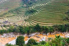 Terraced rice field landscape near Sa pa in Vietnam. Terraced rice field landscape near Sa pa, Lao Cai, Vietnam stock photos