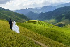 Terraced rice field in Mu Cang Chai, Vietnam, with happy travel couple