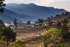 Terraced rice field with rural houses in Bhutan. Bhutan is a small country in the Himalayas between the Tibet Autonomous Region of royalty free stock images
