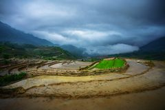 Terraced rice field in water season, the time before starting grow rice, with black clouds coming on background in Y Ty, Lao Cai p royalty free stock photography