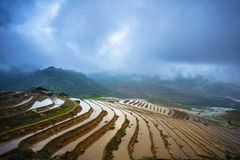 Terraced rice field in water season, the time before starting grow rice in Y Ty, Lao Cai province, Vietnam stock image
