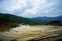Terraced rice field in water season, the time before starting grow rice in Y Ty, Lao Cai province, Vietnam royalty free stock photo