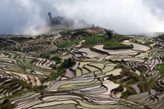Terraced rice field in water season in Yuanyang, China Stock Photos