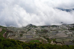 Terraced rice field in water season in Yuanyang, China Royalty Free Stock Image