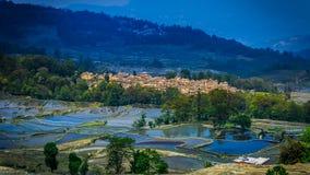 Terraced rice field. (Yuanyang Hani Stock Photography