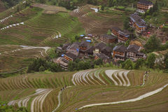 Terraced rice fields, in Dazhai village, Guangxi, China Stock Images