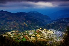 Terraced rice fields in Laohuzui Yuanyang Stock Photos