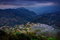 Terraced rice fields in Laohuzui Yuanyang Royalty Free Stock Image