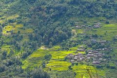 Terraced rice fields in Nepal Stock Photos