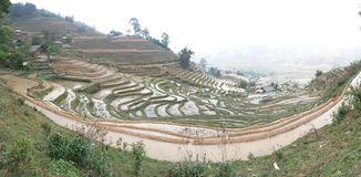 Terraced rice fields , Sapa, Vietnam, South East Asia. Sa Pả or Chapa, is a frontier township and capital of Sa Pa District in Lào Cai Province in north stock images