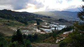 Terraced rice fields in Yunnan, China royalty free stock photos