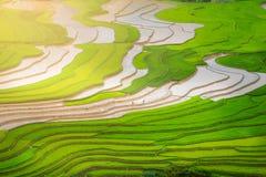 Terraced ricefield στην εποχή νερού στη MU Cang Chai, Βιετνάμ Στοκ φωτογραφία με δικαίωμα ελεύθερης χρήσης