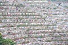 Terraced tombs at Tseung Kwan O Chinese Permanent Cemetery, Hong Kong Stock Photography