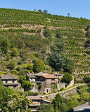 Terraced Vineyards of Malevall France Royalty Free Stock Images