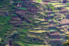 Terraces. Typical field and garden terrace on madeira island, portugal Royalty Free Stock Images