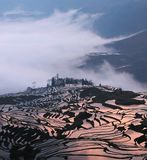Terraces and clouds. YuanYang terrace in morning time, west-south of YunNan province China in Mar stock images