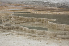 Terraces of geothermal pools at Mammoth Hot Springs, Yellowstone Royalty Free Stock Photography
