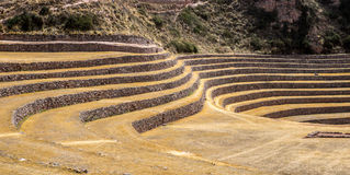 Terraces in the hills of Peru Royalty Free Stock Photo