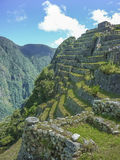 Terraces of Macchu Pichu City Stock Images