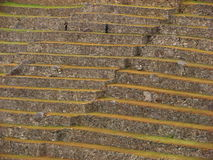 Terraces at Machu Picchu. Machu Picchu is one of the finest Inca sites, mainly due to the fact that the Spanish conquistadores never found it Stock Photo