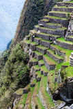 Terraces of Machu Picchu Royalty Free Stock Photos