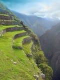 Terraces of Machu Picchu. Peru. Agriculture terraces and mountain roads stepwise of complex Machu Picchu. inca empire in Cuzco, Peru Royalty Free Stock Image