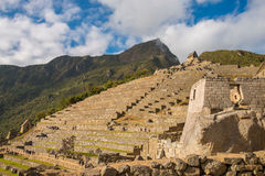 Terraces in Machu Picchu Stock Photo