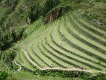 Terraces of Machu Picchu. Urubamba valley in Peru. Hill with agriculture terraces and mountain roads stepwise of Machu Picchu in Peru Stock Photos