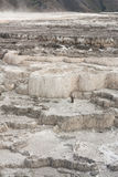 Terraces of New Blue Spring Stock Images
