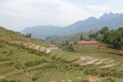 Terraces in North Vietnam mountains Royalty Free Stock Image