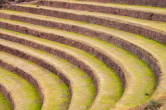 Terraces in Pisac Royalty Free Stock Photo
