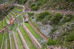 Terraces of Pumatallis at the Inca Fortress in Ollantaytambo, Peru Stock Images