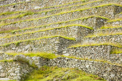 Terraces in the ruins of Machu Picchu Royalty Free Stock Photography