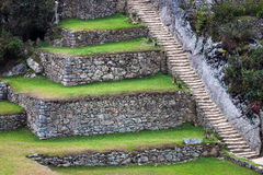 Terraces and stairs Stock Image