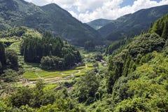Terracess montagneux de riz de région photos libres de droits