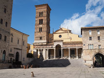 Terracina in Italy. Terracina Cathedral Cattedrale dei SS. Pietro e Cesareo. Terracina high or ancient. Region Lazio, Italy Royalty Free Stock Photos