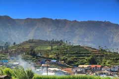 Terracing is a technique of planting in the highlands. Like in this Dieng plateau stock photography