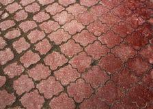 Terracota cracked aged paving wheathered background royalty free stock image