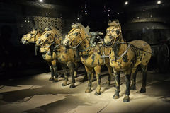 Terracota Horse. The Terracotta Army is a collection of terracotta sculptures depicting the armies of Qin Shi Huang, the first Emperor of China Royalty Free Stock Photography