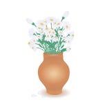 Terracota Pot with Chamomiles Stock Photo