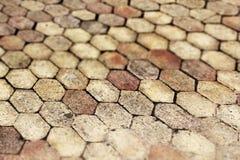 Terracota que pavimenta la teja, pequeña profundidad del campo Foto de archivo libre de regalías