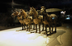 The Terracotta Army. Terra-cotta Warriors (Chinese: 兵马俑)and Horses is a collection of 8,099 life-size terra cotta figures of warriors and horses located in Royalty Free Stock Photo